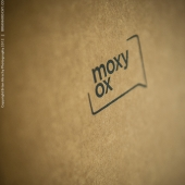 brian-hirschy-photography-moxy-ox-2012-12-of-12